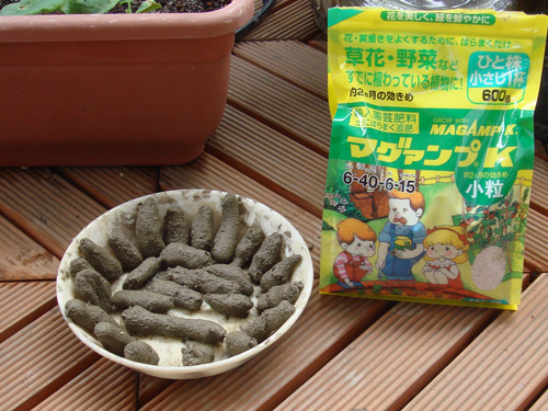 睡蓮の肥料.jpg