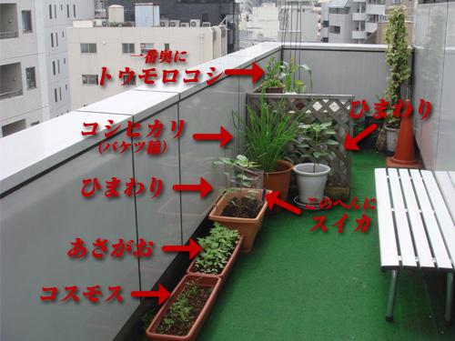 office_kaisetsu.jpg
